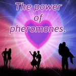 """""""…and they have to smell right!""""  The power of pheromones."""